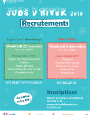 Jobs d'hiver 2019 : recrutements sur Nantes agglo