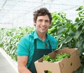 Jobs dans l'agriculture©iStock.om/OJO_Images