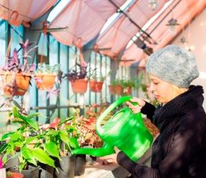 Apprentissage_Statut apprenti_Rémunération apprenti_©iStock.com/kasto80