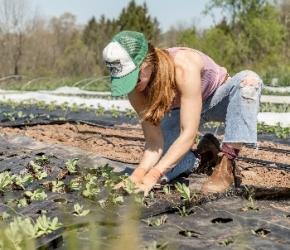 """Aide à la recherche d'un emploi _ MSA Maine et Loire - Crédits photo : <span>Photo by <a href=""""https://unsplash.com/@dirtjoy?utm_source=unsplash&utm_medium=referral&utm_content=creditCopyText"""">Zoe Schaeffer</a> on <a href=""""https://unsplash.com/s/p"""