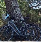 Vélo : de l'achat aux pistes cyclables !